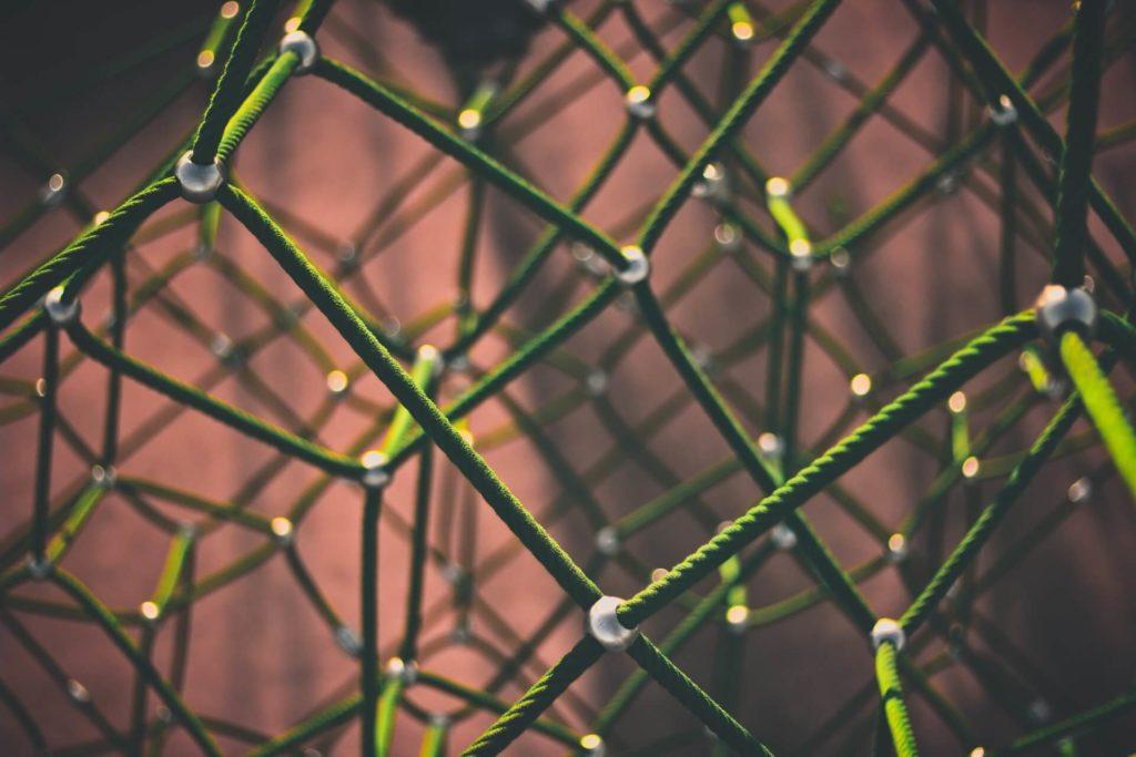 el primer principio de la ecología todo está conectado con todo lo demás