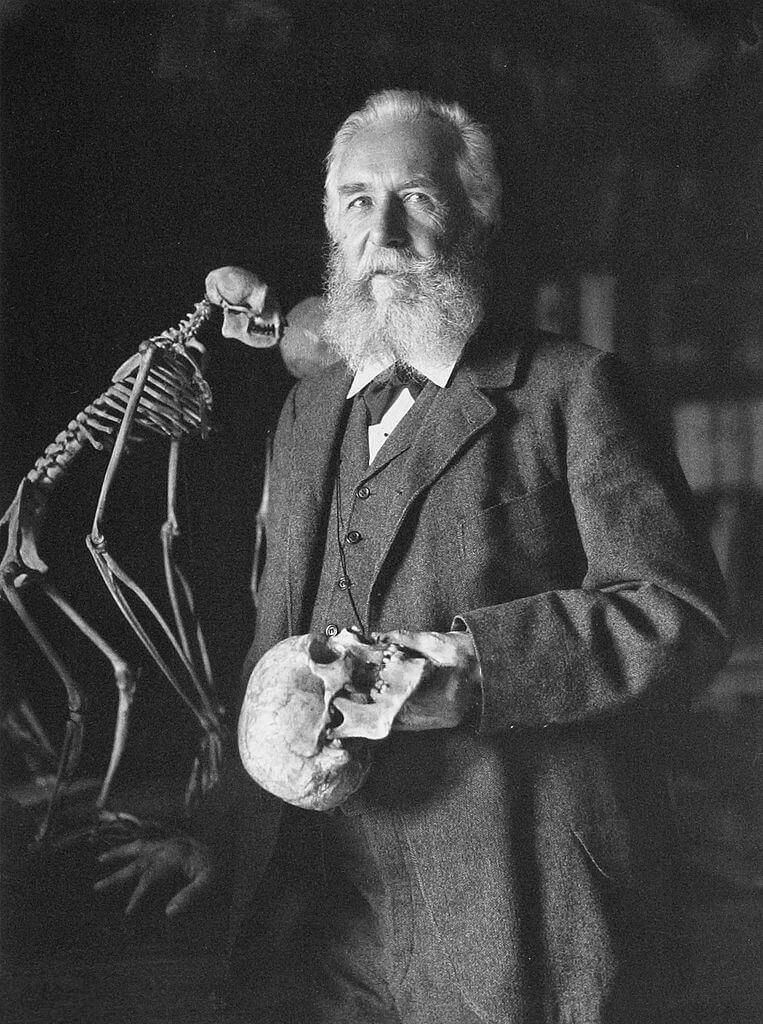 ernst haeckel padre de la ecologia viendo a la cámara en blanco y negro