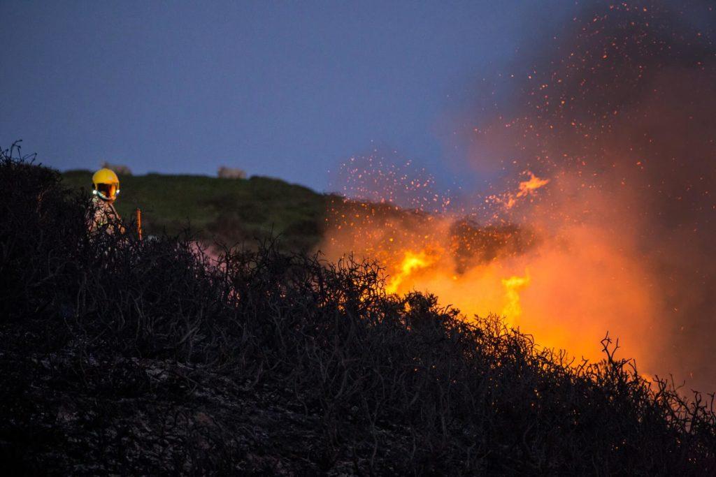 Incendio forestal controlado
