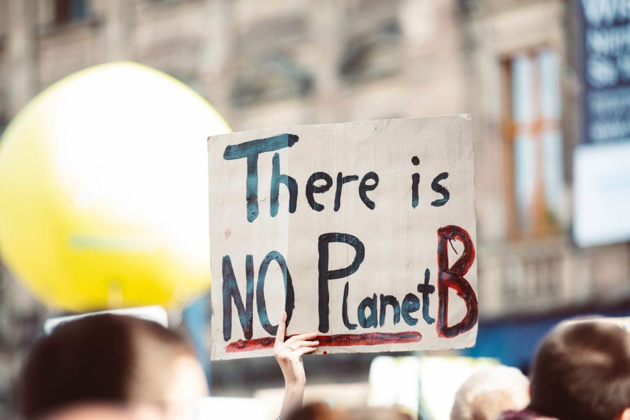 importancia del cuidado del medio ambiente
