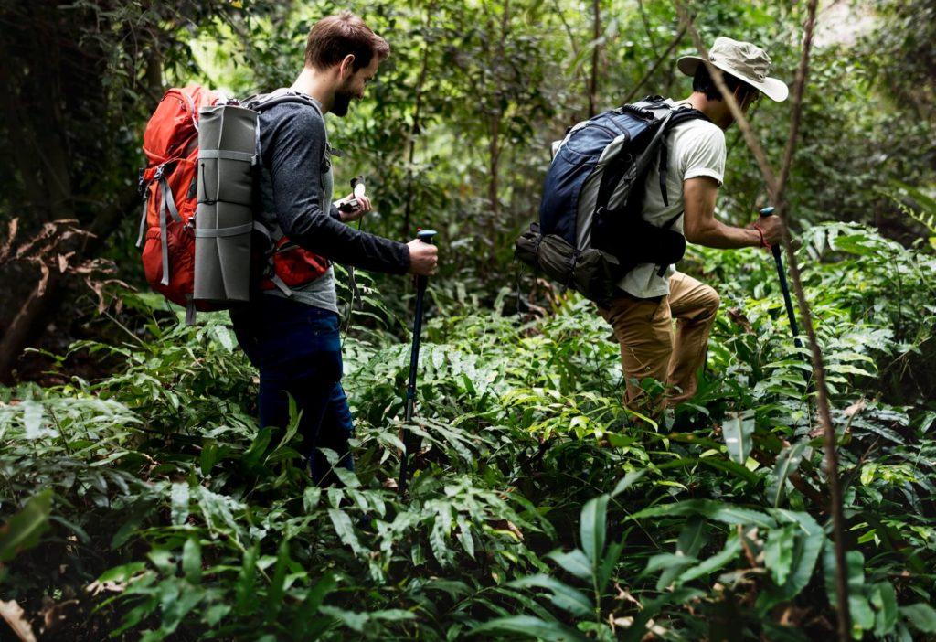 Dos personas caminando en la naturaleza, representando la sustentabilidad